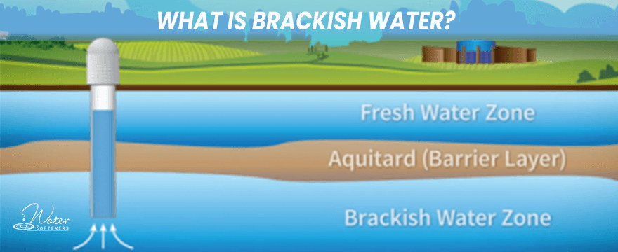 What is brackish water?
